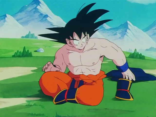 Weighted Clothing Dragon Ball Wiki Fandom Powered By Wikia