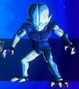 Kaiwareman XV