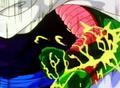 Piccolo 009 PIONEER 1