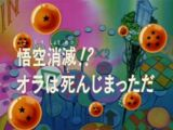 Episodio 30 (Dragon Ball GT)