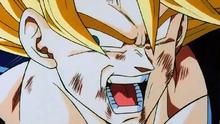 Goku fin dbz