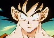 Goku62