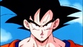 GokuS14