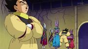 Goku Vegeta regras