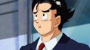 Goku vigilante