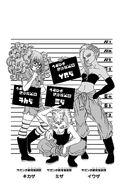Kikaza, Miza e Iwaza ilustración extra volúmen 13