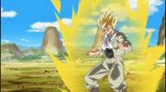 Galeria Goku 1