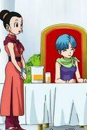 Bulma and chichi san