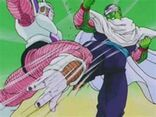 Piccolo vs freezer