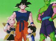Goku e gli altri si rilassano