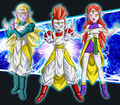 Zen, Fen et Wairu (Super God Class-Up)