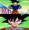 Error Ropa de Goku