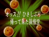 Goku voltou!