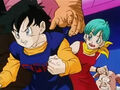 Dbz245(for dbzf.ten.lt) 20120418-17281082