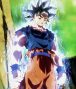 Sign of Ultra Instinct