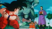Son Goku contro Tao Pai Pai - Torneo di Miifan