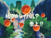 Episodio 14 (Dragon Ball)-0