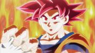Goku Super Saiyan Dios Torneo de la Fuerza
