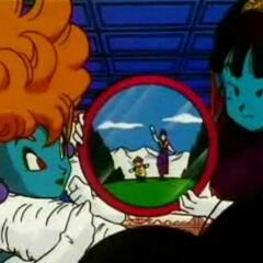 La Principessa scruta l'animo di Goku mentre dorme.
