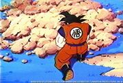 Son Goku30