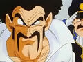 Dbz237 - by (dbzf.ten.lt) 20120329-16410626