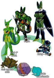 Le trasformazioni di Cell