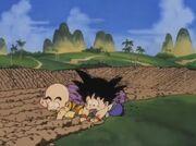 Training Island - Son Goku e Crilin allenamento