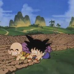 Son Goku e Crilin arano i campi a mani nude come parte del loro duro allenamento.