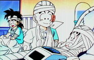 Goku, Krilin y Gohan