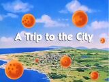 A Trip to the City