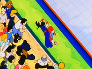 Chi-Chi derrotada por Goku