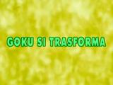 Goku si Trasforma