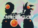 L'invincibile coppia (Dragon Ball Z)