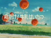 Episodio 17 (Dragon Ball)-0