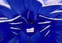 GokusolarflarePIONEER