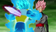 Black Goku vs Vegeta rose