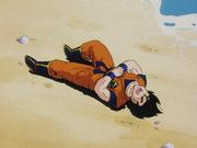 Goku messo KO da Radish