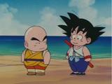 Dragon Ball: Season 1 (Quotes)