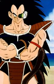 Raditz with tail