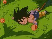Goku parte con il drago