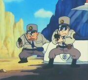 Polizia di Brown Country