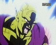 Piccolo Power's Up