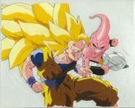 File:193px-Ss3 goku vs kid buu.jpg