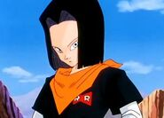 Android-17-android-17-30805394-403-290