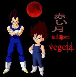 Adult and kid vegeta image