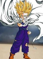 Gohan after killing Cell.