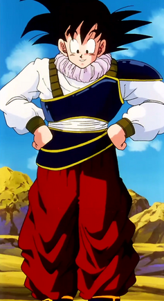Goku Yardrat Outfit