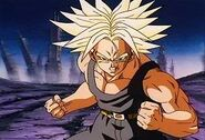 Trunks Norm wo