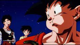 Goku,videl,gohan