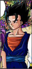Vegetto16 color